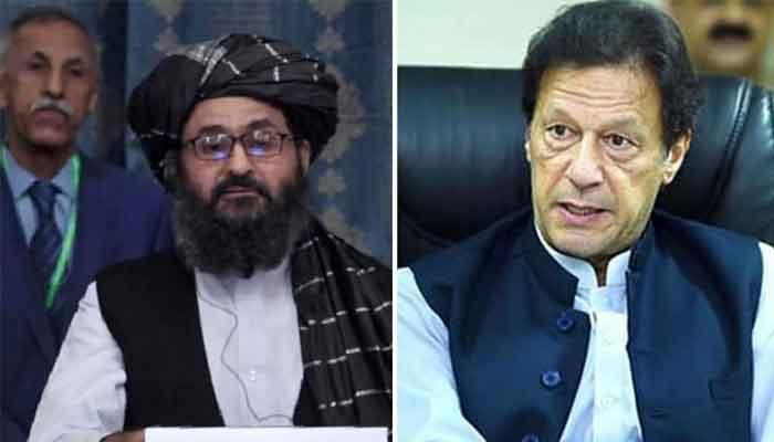 535816 9320280 taliban5 updates 1 5